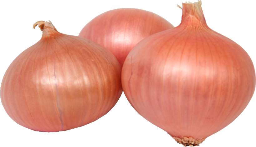 agrocuna daimiel cebollas